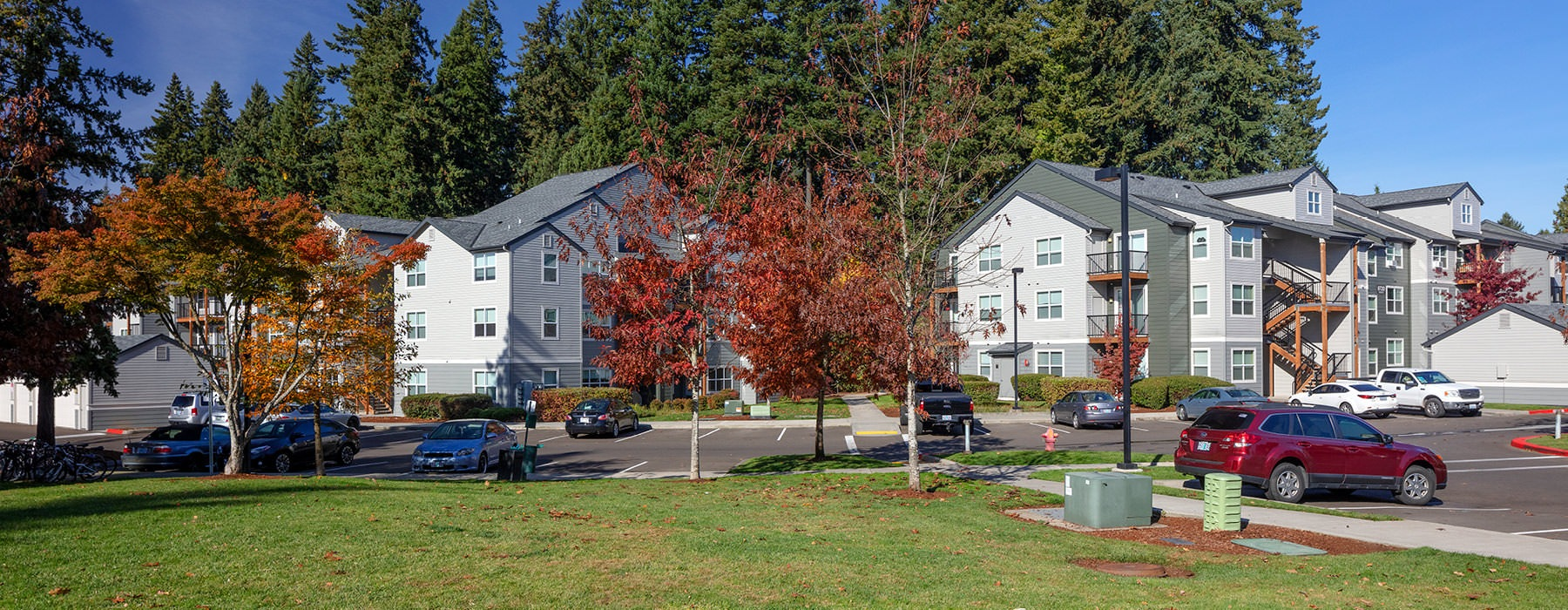 Jory Trail apartments and parking lot surrounded by trees
